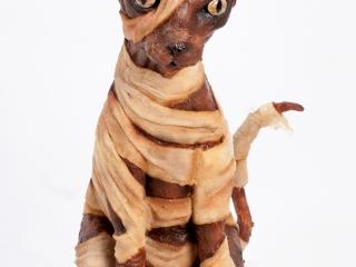 Mummycat1